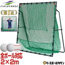 野球 練習 ネット 硬式 軟式M号・J号 ソフトボール対応 2m×2m 専用バッグ・ターゲット付き 打撃 バッティング FBN-2020H2 フィールドフォース その1