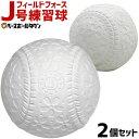 最大10%引クーポン フィールドフォース J号練習球 2個売り 軟式野球ボール 小学生向け ジュニア 練習用 練習ボール J球 J号ボール 桜ボール さくらボール FNB-682J