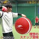 最大10%引クーポン 野球 投球 送球 スローイングマスター ピッチング キャッチボール ケガ 怪我 リハビリ イップス FPG-5 フィールドフォース トレーニング