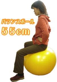 送料無料!トレーニングガイド・ハンドポンプ付バランスボール55cmが→1,980(税込)!【smtb-f】