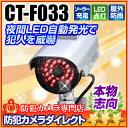 防犯カメラ ダミー【CT-F033】屋外 防雨 ソーラー発電...