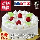 誕生日バースデーケーキ/ノーマル/生クリームデコレーション/5号15cm(5切目安)