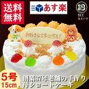 【誕生日ケーキ】【バースデーケーキ】子供用DXデコレーション/生クリーム5号