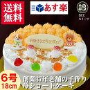 【誕生日ケーキ・バースデーケーキ】子供用DXデコレーション/生クリーム6号