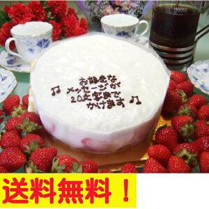 【メッセージ】大阪ヨーグルトケーキ5号 15cm人気の 誕生日ケーキ バースデーケーキ 老舗の…