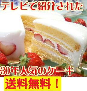 大阪ヨーグルトケーキ・ノーマル6号 18cm【送料無料】【あす楽】【ケーキ】