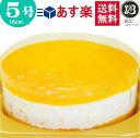 5号ノーマルオレンジヨーグルトムースケーキ/ このケーキに名入れはできません名入れの場合は他のケーキをお選び下さい お中元 夏ギフト サマーギフト その1