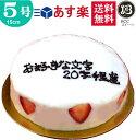バースデーケーキ 誕生日ケーキ 5号 名入れ 大阪ヨーグルトケーキ / 父の日 15cm フルーツケ ...