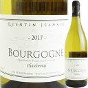 ドメーヌ フィリップ・ジャノ ブルゴーニュ・ブラン [2017] 2200020020332【60003】【フランス】【白ワイン】【new1904】【F5】