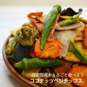 国産野菜100%【ココナッツベジチップス】純国産野菜だけで野