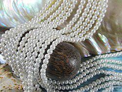 殼部分 (貝殼珠) 圓珍珠純白色 4 毫米珍珠殼部分珍珠珍珠項鍊珍珠耳環珍珠白殼珊瑚珠子串珠配件讓禮物小哥婚禮白色珍珠-珍珠