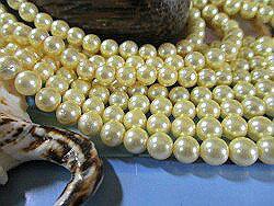 殼體零件 (貝殼珠) 圓珍珠黃 (光) 6 毫米珍珠殼部分珍珠珍珠項鍊珍珠耳環珍珠白殼珊瑚珠子和配件做禮物小哥婚禮黃金珍珠-珍珠