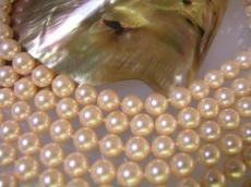 做外殻珍珠(貝珍珠)圓珠子桃子(燈)6mm珠子外殻珍珠珍珠珍珠項鏈珍珠無環耳環真珠白蝶貝珊瑚有孔玻璃珠·有孔玻璃珠配飾零件的gifutopuruzento結婚純白是關聯漂亮的kode