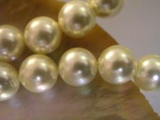 做外殻珍珠(貝珍珠)圓珠子黄色黄金(燈)12mm珠子外殻珍珠珍珠項鏈珍珠無環耳環真珠白蝶貝珊瑚有孔玻璃珠·有孔玻璃珠配飾零件的禮物禮物結婚純白