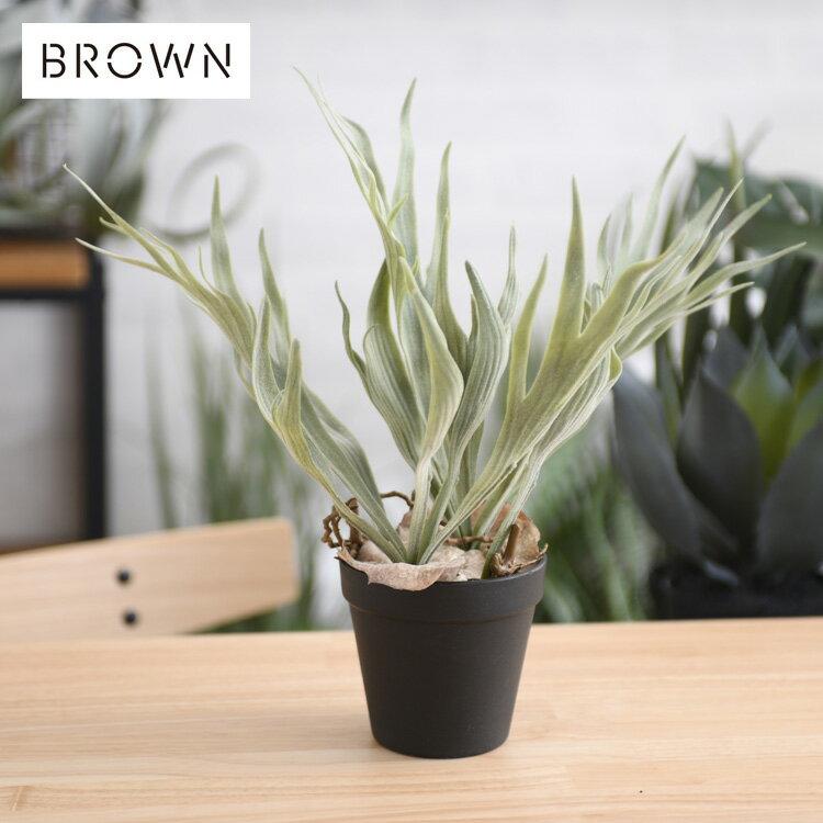 Brown. ブラウン ビカクシダ ポット 32 BA960-1 観葉植物 フェイクグリーン ボタニカル 造花 おしゃれ ポット 小さい インテリア ディスプレイ 癒し リラックス 人工観葉植物