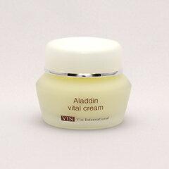 【ポイント10倍】VIN(バン) アラジン バイタルクリーム 40g 【無添加化粧品、低刺激性化粧品、サロン専売品】