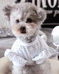 犬服 タンクトップ 犬 服 犬の服 ドッグウェア 小型犬 中型犬 ペット用 犬用 洋服 可愛い 春夏 夏 お出掛け お散歩 イヌ用 いぬ用 送料無料 クラウン ボーダー