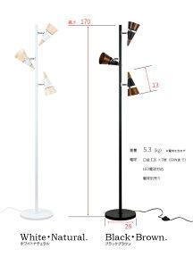 【送料無料】フロアライトビークフロア[BEAKFLOOR]BBF-029ボーベル[beaubelle]【スタンドライトフロアランプフロアスタンド間接照明癒やし寝室照明器具照明かわいいおしゃれ北欧ナチュラルテイスト男前スチール新生活】【インテリア】