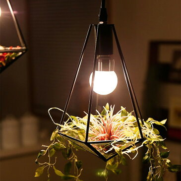 照明 LED 1灯 ペンダントライト ジェリコ フェイクグリーン セット|照明器具 間接照明 天井照明 テラリウム トイレ 内玄関 おしゃれ モダン 電気 ライト ガラス ペンダント ダイニング用 食卓用 デザイン 寝室 玄関 植物
