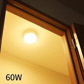 小型 LEDシーリングライト ミニLED[mini LED]60W相当タイプ TN-CLMIN-N/L|照明器具 LED照明 電球色 昼白色 コンパクト ミニ スリム トイレ 廊下 階段 玄関 クローゼット シンプル シーリング ライト インテリア 天井照明 電気 おしゃれ照明 天井 寝室