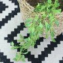【いなざうるす屋】フェイクグリーン 垂れる葉っぱ Sサイズ【いなざうるす グリーン 緑 葉 葉っぱ フェイク ガーランド アーティフィシャルグリーン 壁掛け ミニ 造花 観葉植物 おしゃれ かわいい 北欧 ナチュラル 雑貨 壁 飾り インテリア DIY テレワーク】