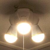 シーリングライト 3灯 ブラント[BLUNT]PKD-0201|照明器具 灯具 天井照明 間接照明 ダイニング用 食卓用 リビング用 居間用 プルスイッチ シンプル 北欧 テイスト おしゃれ 玄関 寝室 廊下 ウォークインクローゼット インテリア ライト 電気 LED シーリング