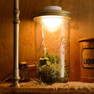 【送料無料】フロアライト 1灯 ボタニック ジャーライト 230 AOL-602 スワン電器 照明器具 間接照明 照明 USB 対応 led ガラス リビング用 居間用 ダイニング用 食卓用 寝室 アンティーク 北欧 お