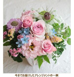 ■誕生日結婚記念日お見舞い開店ビジネス開業改築新築お祝いなど季節のお花を使ったアレンジメント!!ベリー(スイートピンク)10P21Jul09