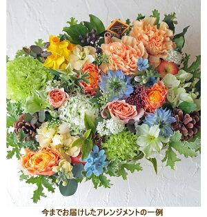 誕生日結婚記念日お見舞い開店ビジネス開業改築新築お祝いなど季節のお花を使ったフラワーケーキアレンジ!!Brownie/ブラウニー(ナチュラルイエロー)10P21Jul09