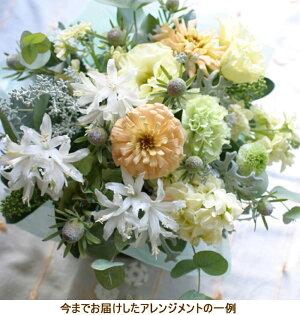誕生日結婚記念日お見舞い開店ビジネス開業改築新築お祝いなど季節のお花を使ったアレンジメント!!Harvestハーベスト(クリーミーホワイト)白画像サービス画像配信