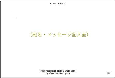 BeautifulBoyオリジナルポストカード13種類+2枚おまけ付き15枚セット