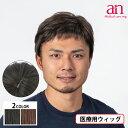 男性用ウィッグ フルウィッグ かつら ストレート 人工皮膚 手植え 軽量 自然 通気性 男性 ショート an メンズNO10 wig-st-57