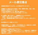 【メール便可】ホーユー プロステップ グレイカラー 1剤 グレイアッシュ 【GA9】 <80g> hoyu PROSTEP ヘアカラー ヘアマニキュア※メール便8個まで 2