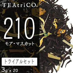 ティートリコ モアマスカット トライアルパック 3g x 20個セット (TEAtriCO) お茶 紅茶 フレーバードティー ティー セット