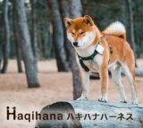 ハキハナ haqihana ハーネス 【正規品】安全 犬用 胴輪【SL サイズ】【メール便のみ】