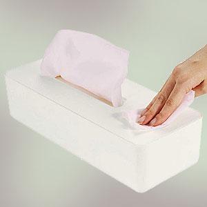 アーネスト ティッシュボックス ルテラ ※市販の除菌アルコールで簡単ウェットティッシュ