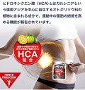 グリコ パワープロダクション エキストラ バーナー 燃焼系運動中の脂肪の燃焼を高める! POWER PRODUCTION 3