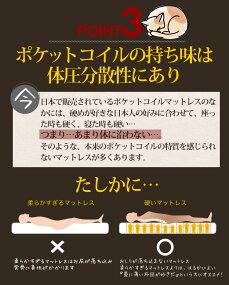 【送料無料】マットレスポケットコイルダブルEN111P