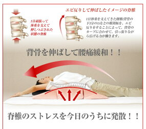 【送料無料】エビ反りクッション寝返り防止クッション体位変換ウレタン三角クッションアーチクッションブルーブラウンピンクアイボリー時間指定可能