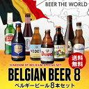 Beer王国 ベルギービール 8種8本セット 7弾[詰め合わ