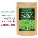 スピルリナ 100% サプリ 16800粒 スピルリナ100% で 粒 にした 健康 サプリメント spirulina 野菜不足 の方にもおすすめ nichie ニチエー