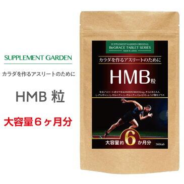 サプリメントガーデン HMB粒 大容量 約6ヶ月分/360粒 HMB HMBカルシウム 36000mg BCAA Lカルニチン アルギニン オルニチン グルタミン αリポ酸 コエンザイムQ10 ヒハツエキス エクササイズ 筋肉 筋力 筋トレ トレーニング サプリ サプリメント