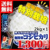 平成28年産 無洗米 2kg 送料無料 米 熊本県産阿蘇の米 コシヒカリ 九州産 無洗米 2キロ 送料込み
