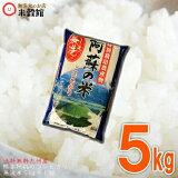 無洗米 5kg 九州 特別栽培米熊本県産 阿蘇産コシヒカリ5キロ 送料込み 無洗米 5kg 送料無料 九州産 米