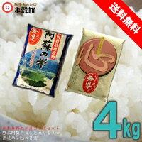 【送料無料】【無洗米】無洗米おためし2kg2個セット「心」&特別栽培米コシヒカリ