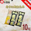 お米 10kg 送料無料食味値ランキング「特A」江刺金札米(