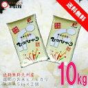 【ふるさと納税】0010-D-073 井田酵素米 にこまる(かき殻・万田酵素使用)