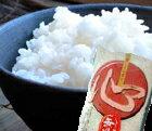 無洗米送料無料九州産米おコメ福岡10kg