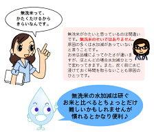 平成30年産福岡県産ヒノヒカリ九州産無洗米2kg送料無料