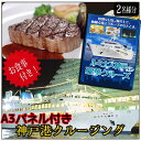 【二次会・景品に】レストラン船クルージングギフト(A3パネル付き)【送...